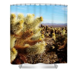 Shower Curtain featuring the photograph Desert Plants - Porcupine Cholla by Glenn McCarthy