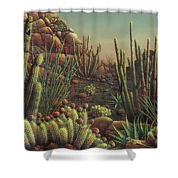 Desert Potpourri  Shower Curtain