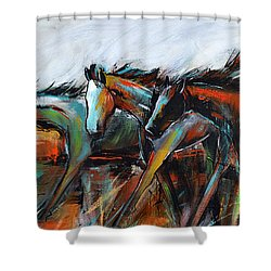 Shower Curtain featuring the painting Desert Racers by Cher Devereaux