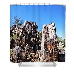 Shower Curtain featuring the photograph Desert Rocks by Ed Cilley