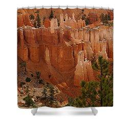 Desert Sentinels Shower Curtain