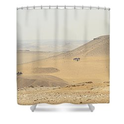 Shower Curtain featuring the photograph Desert by Silvia Bruno