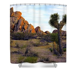 Desert Soft Light Shower Curtain
