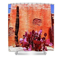 Desert Solace Shower Curtain
