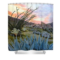 Desert Spirits Shower Curtain