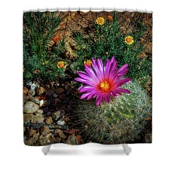 Desert Splash Shower Curtain by Elaine Malott
