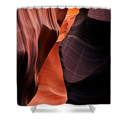 Desert Split Shower Curtain by Mike  Dawson