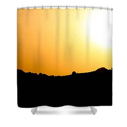 Shower Curtain featuring the photograph Desert Strength  by Jez C Self