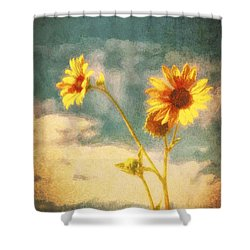 Shower Curtain featuring the photograph Desert Sunflower  ... by Chuck Caramella
