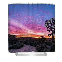 Desert Sunrise At Joshua Tree Shower Curtain