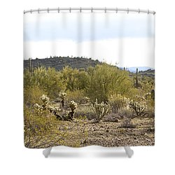 Shower Curtain featuring the photograph Desert Sunrise by Phyllis Denton
