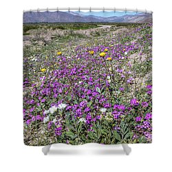 Shower Curtain featuring the photograph Desert Super Bloom by Peter Tellone