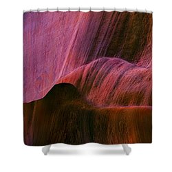 Desert Tapestry Shower Curtain by Mike  Dawson