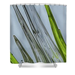 Glass Shower Curtain by Anne Rodkin