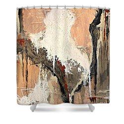 Desert Varnish Shower Curtain