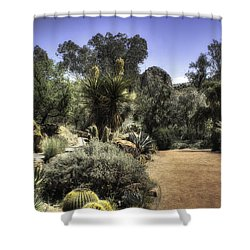 Desert Walkway Shower Curtain