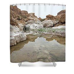 Desert Water Shower Curtain by Yoel Koskas
