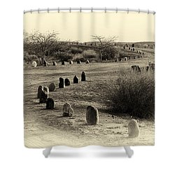 Desert Ways Shower Curtain