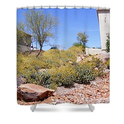 Desert Yard Shower Curtain by Adam Cornelison