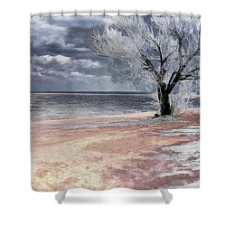 Shower Curtain featuring the photograph Deserted Beach by Pennie  McCracken