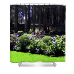 Desierto De Los Leones 1 Shower Curtain