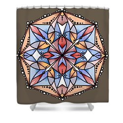 Design 225 D Shower Curtain