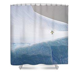 Desolation... Shower Curtain by Nina Stavlund