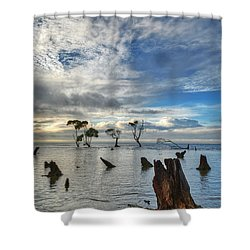 Desolation Shower Curtain by Robert Charity