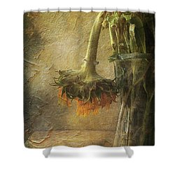 Shower Curtain featuring the digital art Despair by Nicole Wilde