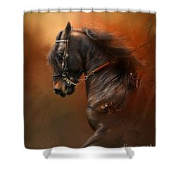 Desparate' Shower Curtain by Kathy Russell