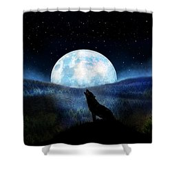 Path Of Destiny Shower Curtain