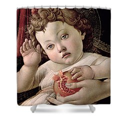 Detail Of The Christ Child From The Madonna Of The Pomegranate  Shower Curtain by Sandro Botticelli