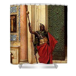 Deutsch Ludwig A Nubian Guard Shower Curtain
