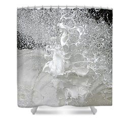 Shower Curtain featuring the photograph Devils Churn Up Close by Holly Ethan