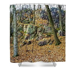 Shower Curtain featuring the photograph Devils Lake Rock Formation  by Ricky L Jones
