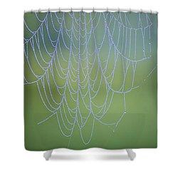 Dew Catcher Shower Curtain