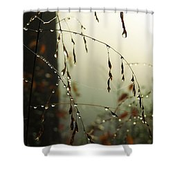 Dew Drop Garland Shower Curtain