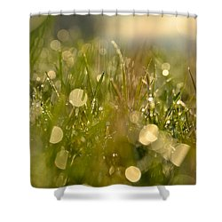 Dew Droplets Shower Curtain