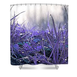 Dew Drops Magic Two Shower Curtain by Robert Ball