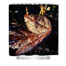 Dew Drops Sparkling And Showing Life On A Leaf -georgia Shower Curtain