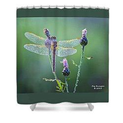 Dew Laden Dragonfly Shower Curtain