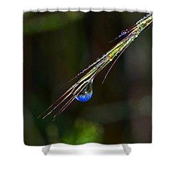 Dewdrop Reflection - Sunrise 001 Shower Curtain