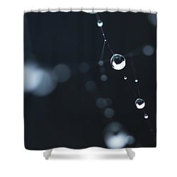 Dewdrops On Cobweb 004 Shower Curtain