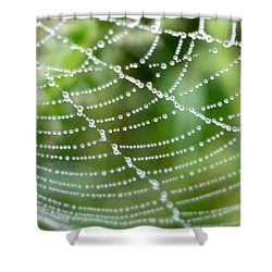Dewdrops  Shower Curtain