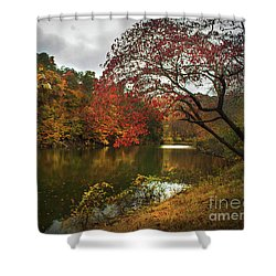 Dewey Lake In Autumn Shower Curtain by Lena Auxier