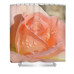 Dewy Rose Shower Curtain