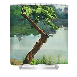 Shower Curtain featuring the painting Dhanmondi Lake 03 by Helal Uddin