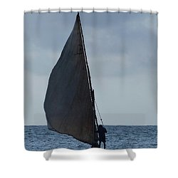 Dhow Wooden Boats In Sail Shower Curtain