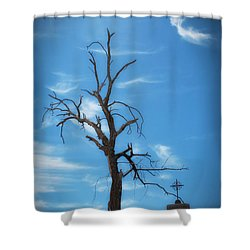 Shower Curtain featuring the photograph Dia De Los Muertos by Lynn Geoffroy