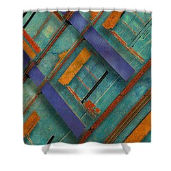 Diagonal Shower Curtain